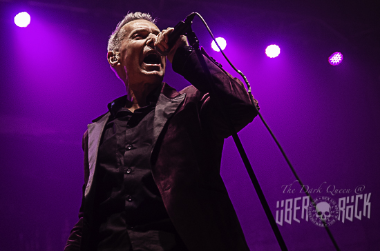 Dr Feelgood at Ulster Hall Belfast