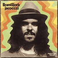 Artwork for Jacoozi by Brant Bjork