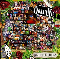 Artwork for Beautiful Things by Donnie Vie