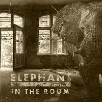 Artwork for Elephant In The Room by Blackballed