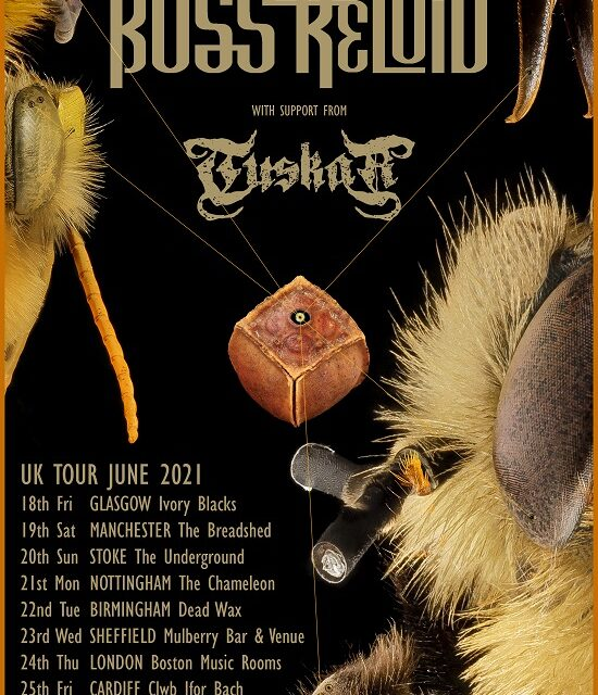 TOUR NEWS: Boss Keloid announce June dates